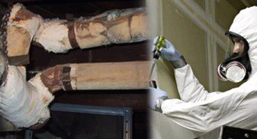 asbestos-course